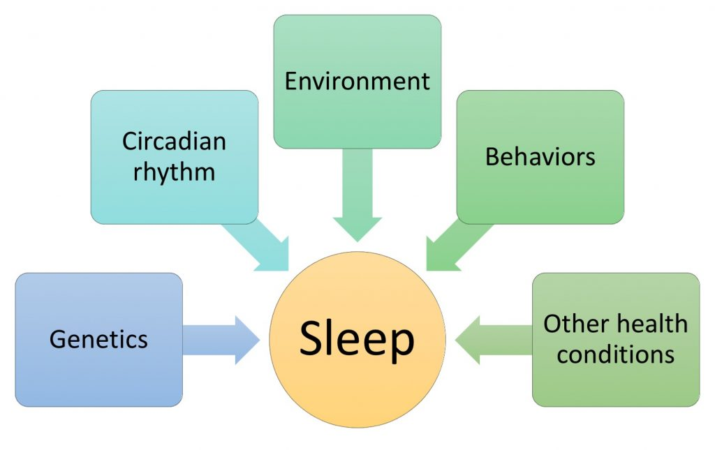 Five categories of factors affecting sleep quality